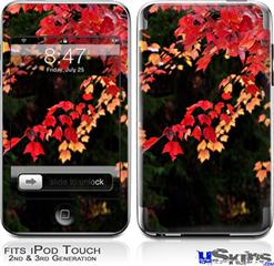 iPod Touch 2G & 3G Skin - Leaves Are Changing